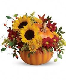 Sunflowers in a Pumpkin