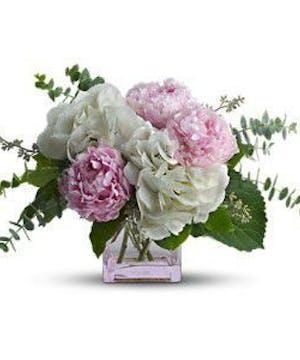 Enjoy the Fragrance of Peonies