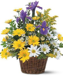 Daisies and Iris's in a Basket