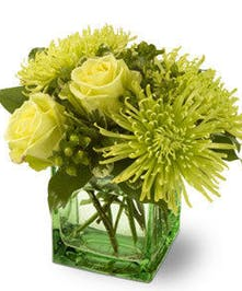 Mix of Green Roses and Chrysanthemums