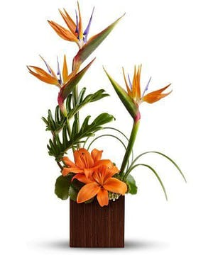Tropics, Lillies and Bamboo Vase