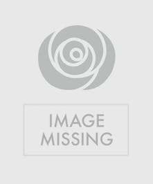 Pink Carnations and Yellow Daisies