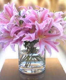 """""""Simply Lillies"""""""