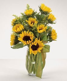 """Sensational Sunflowers"""