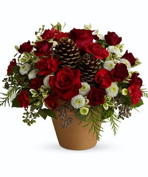 Floral Gift for Winter